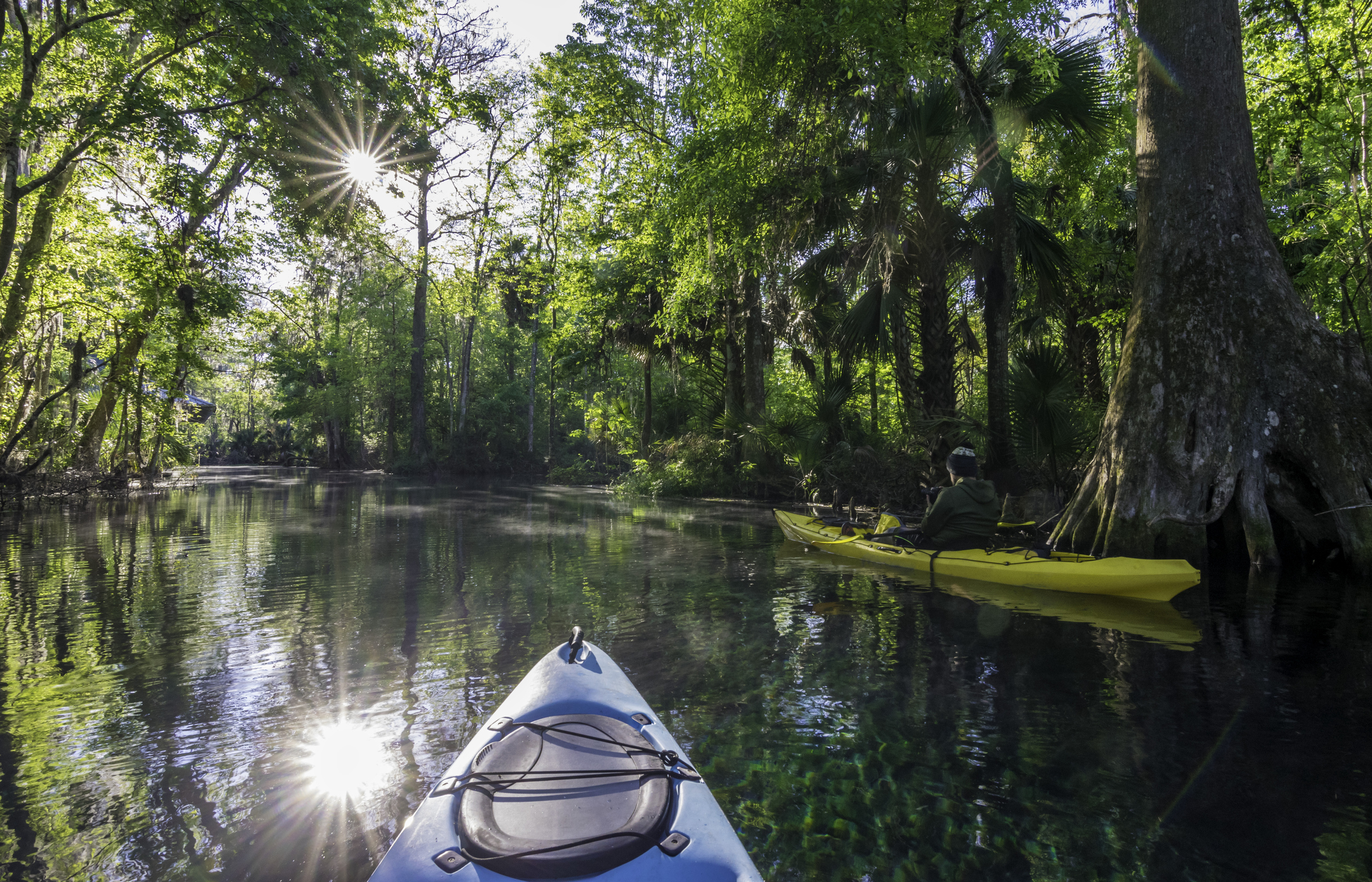 A kayaker in morning light on the Silver River at Silver Springs State Park, around new condos in florida