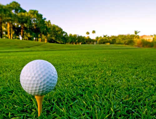 Hole in One! The Best Golf Courses in Bradenton