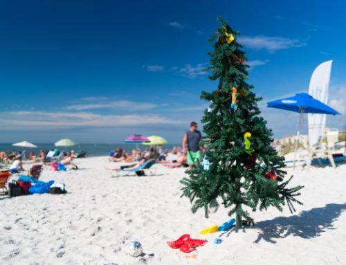 Christmas in Florida: 5 Ways to Celebrate on the Gulf Coast