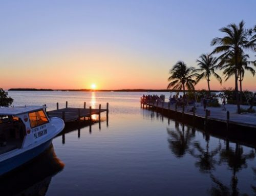 Florida's Gulf Coast vs the Atlantic Coast: Which is Better?