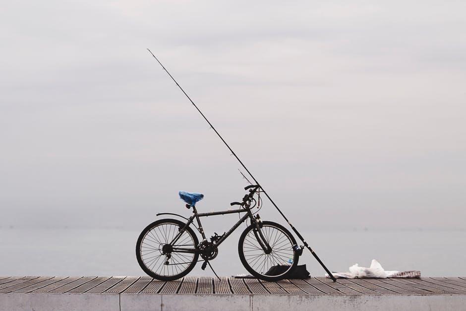 bradenton fl fishing