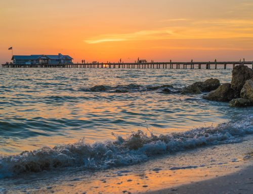 Where to Move in Florida: The Top Cities in Florida
